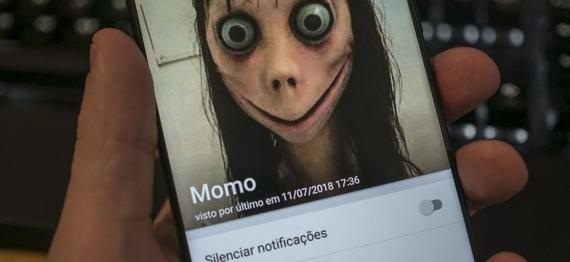 momocel.jpg
